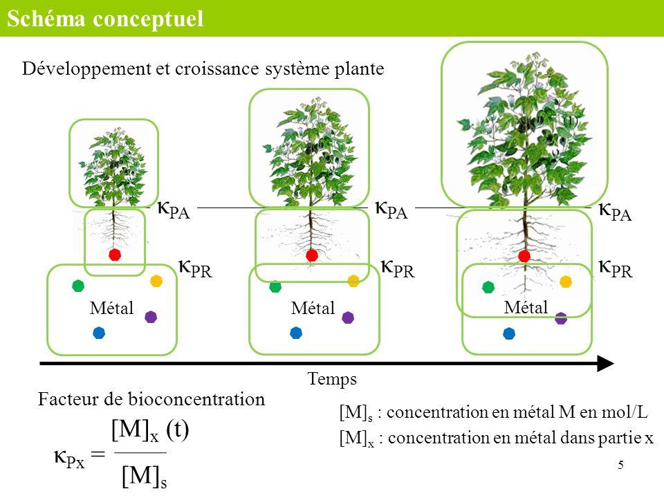 κPA κPA κPA κPR κPR κPR [M]x (t) κPx = [M]s Schéma conceptuel